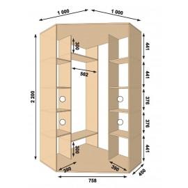 Угловой шкаф-купе (1000 х 450 х 2200 х 1000) Алекса