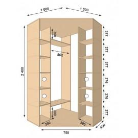 Угловой шкаф-купе (1000 х 450 х 2400 х 1000) Алекса